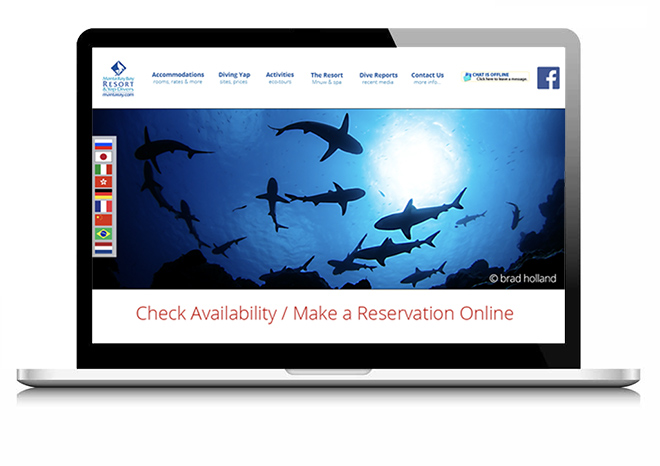 Website design on a laptop