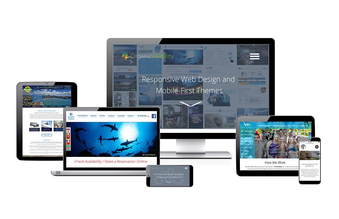 Mobile Responsive Website Designs